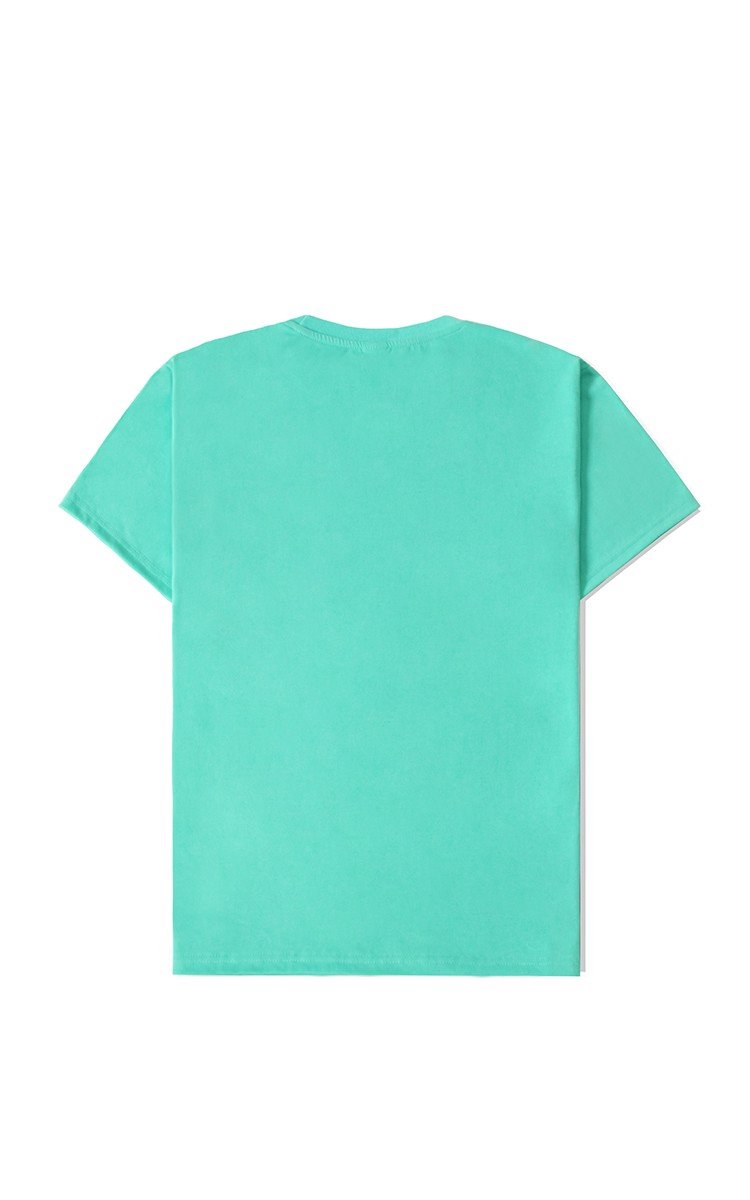 Champion Embroidered Logo T-Shirt In Mint Green