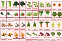 Vegetable card 3 to 6