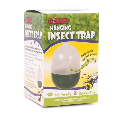 Insect-Trap-Hanging