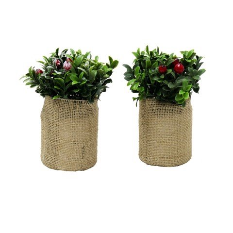 CHRISTMAS PLANT VINTAGE WRAP 12cm 2asst Uncle Bills XB2851