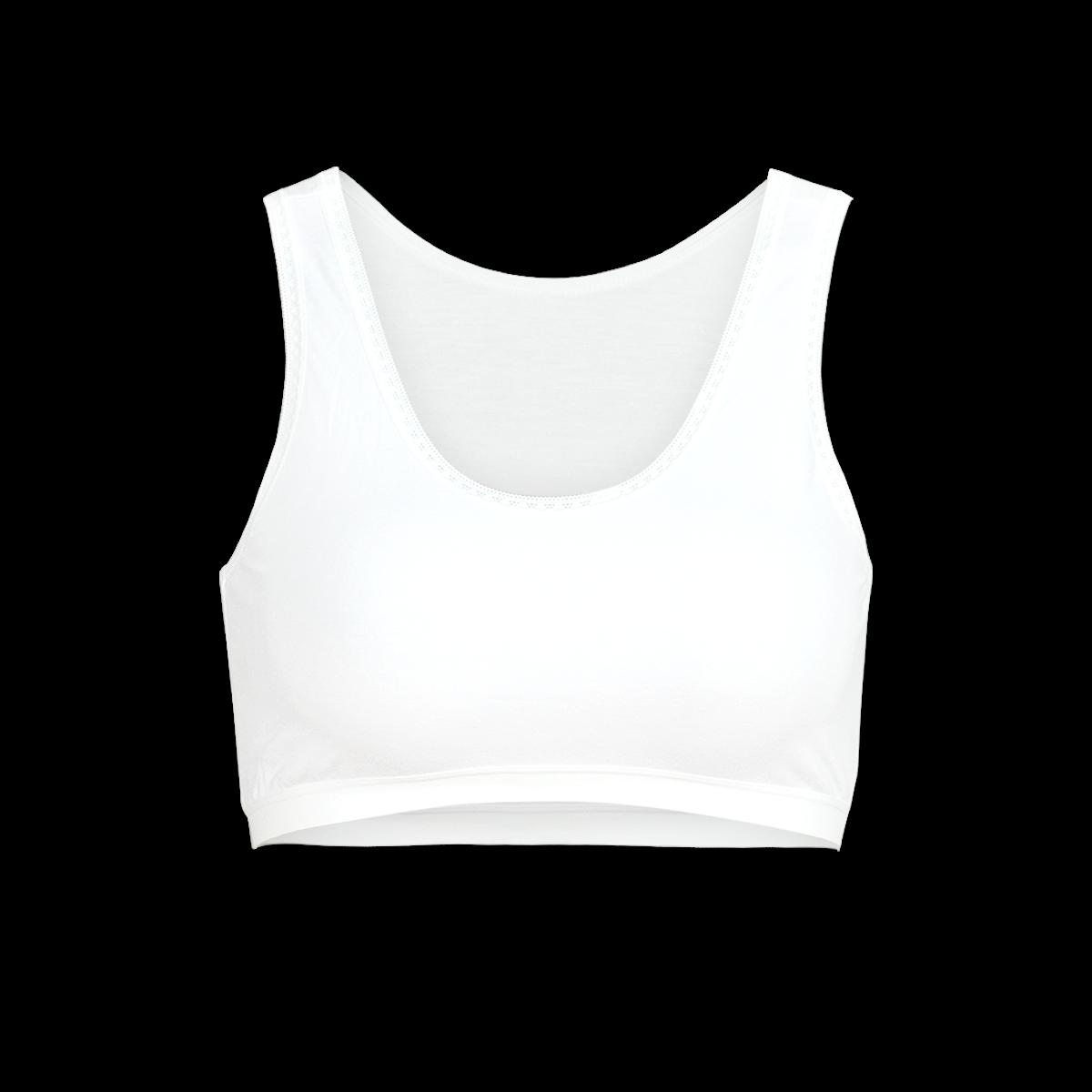 Combo 02 áo lá học sinh cấp 1p kháng khuẩn cao cấp paltal alhs 209p 8940