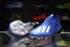 Adidas X 19.1 FG/AG Mutator - Royal Blue/Footwear White/Core Black