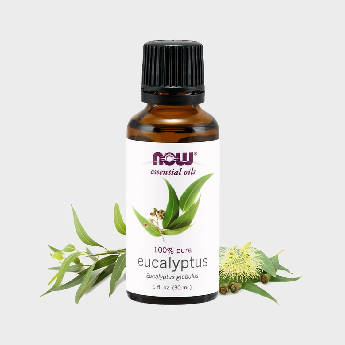 Tinh Dầu Khuynh Diệp Now Foods Essential Oils Eucalyptus 30ml