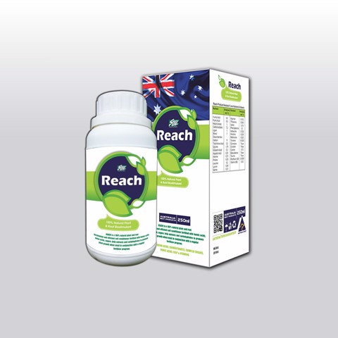 REACH - Chai 250ml (NND-NKR03)