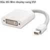 Mini Displayport to DVI 24+5
