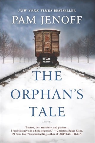 The Orphan's Tale (Paperback)