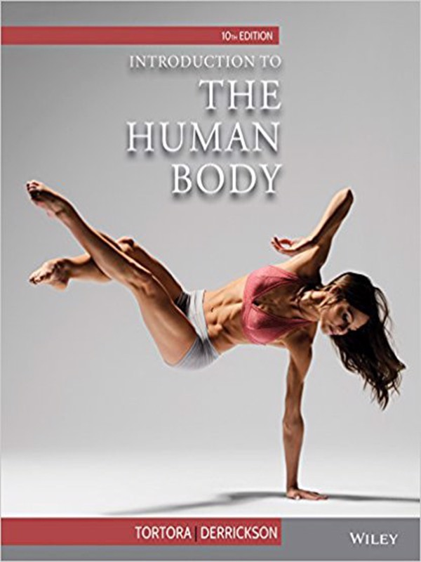 Introduction to the Human Body 10th Edition