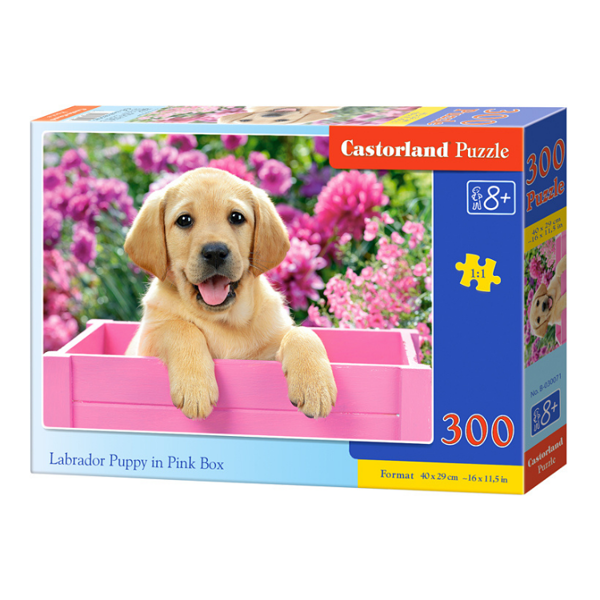 B0030071 Xếp hình puzzle Labrador Puppy in Pink Box Puzzle 300 mảnh CASTORLAND
