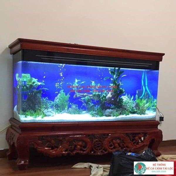 Bể cá chân quỳ Q24 - docuhaiphong.vn