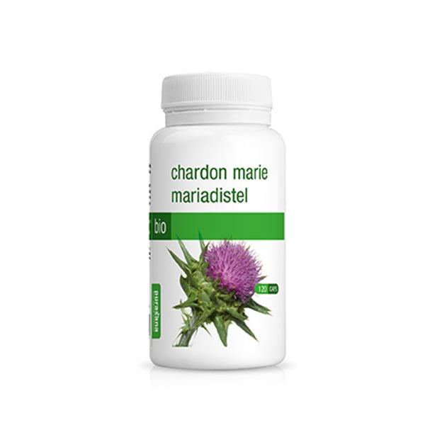 Viên uống hoa kế sữa hữu cơ Chardon Marie Purasana hộp 120 viên