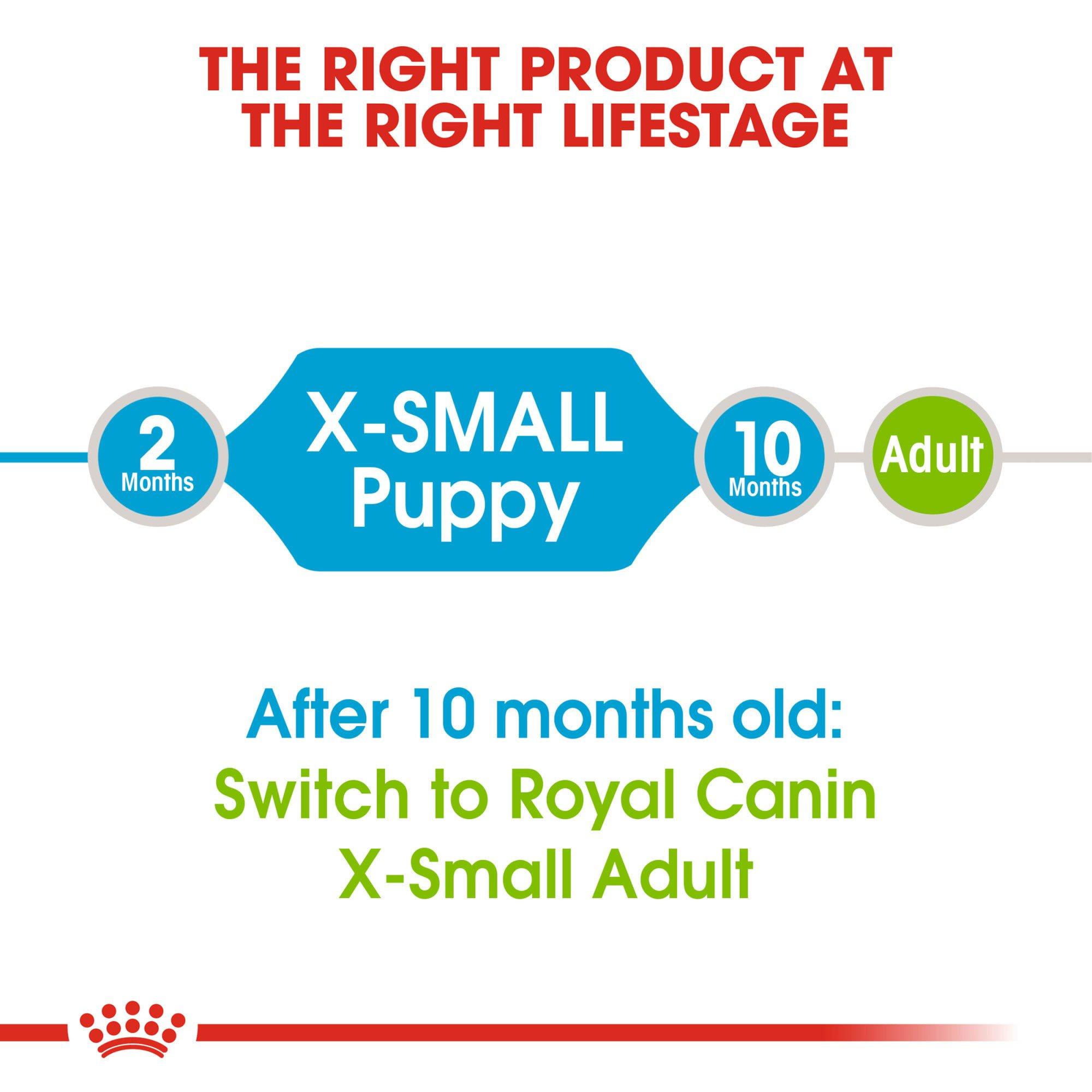 Hạt Royal Canin Xsmall Puppy cho giống chó siêu nhỏ dưới 10 tháng tuổi