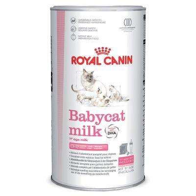 Sữa Royal Canin Babycat Milk cho mèo con