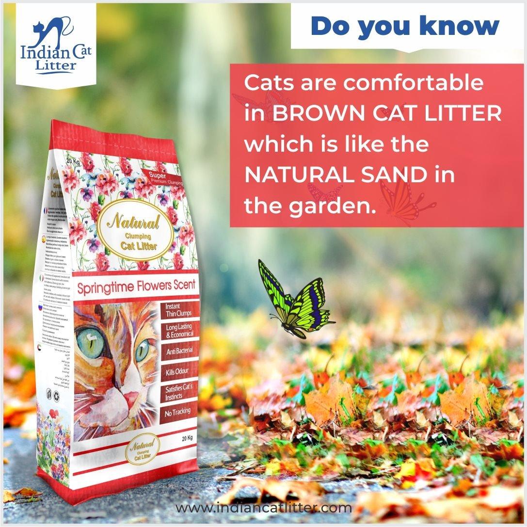 Cát mèo Ấn Độ 7.5kg