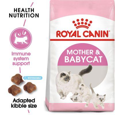 Hạt Royal Canin BabyCat cho mèo mẹ và mèo con
