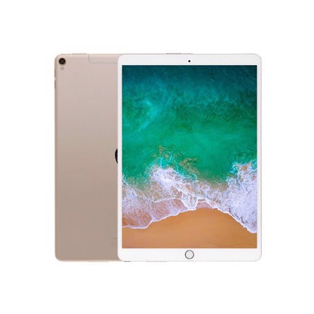iPad Pro 10.5 inch Wifi Cellular 64GB (2017) (VN)