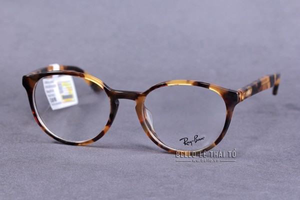 Ray-Ban RB5308F 5947 (52CN)