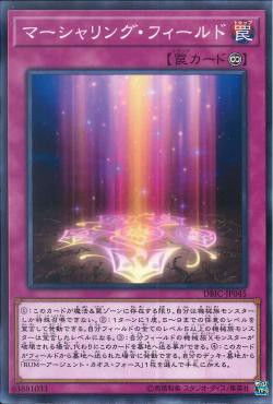 [ JK ] Marshalling Field - DBIC-JP045 - Common