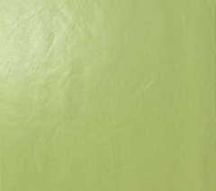 Arch Acid Green Gloss