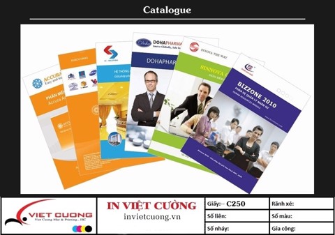 In catalogue mẫu 8