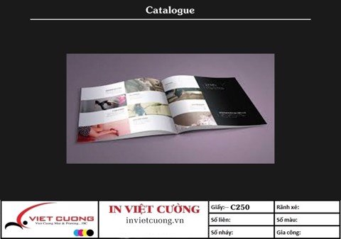 In catalogue mẫu 5