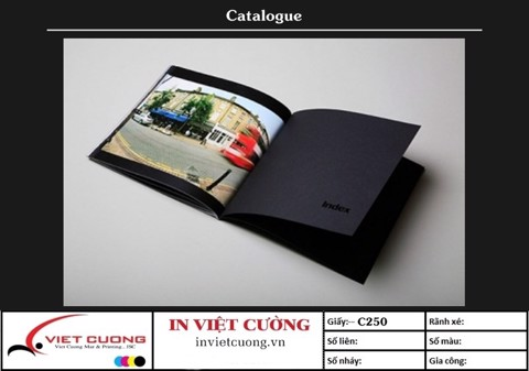 In catalogue mẫu 4