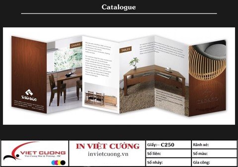 In catalogue mẫu 2