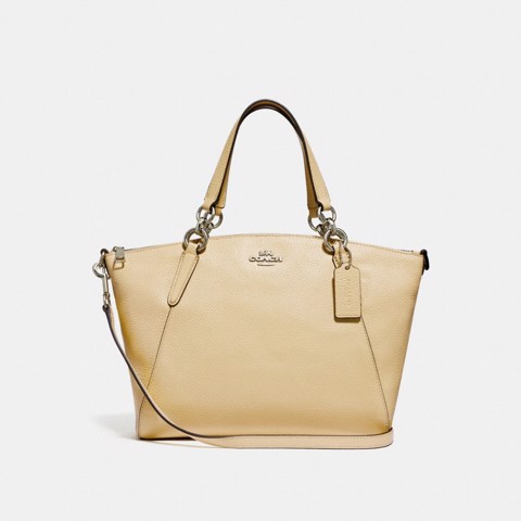 Túi COACH SMALL KELSEY SATCHEL WITH DAISY BUNDLE PRINT INTERIOR F31075 VANILLA-SILVER