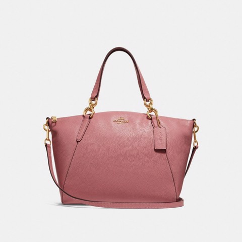 Túi COACH SMALL KELSEY SATCHEL WITH DITSY FLORAL PRINT INTERIOR F31077 Vintage Pink-LIGHT GOLD