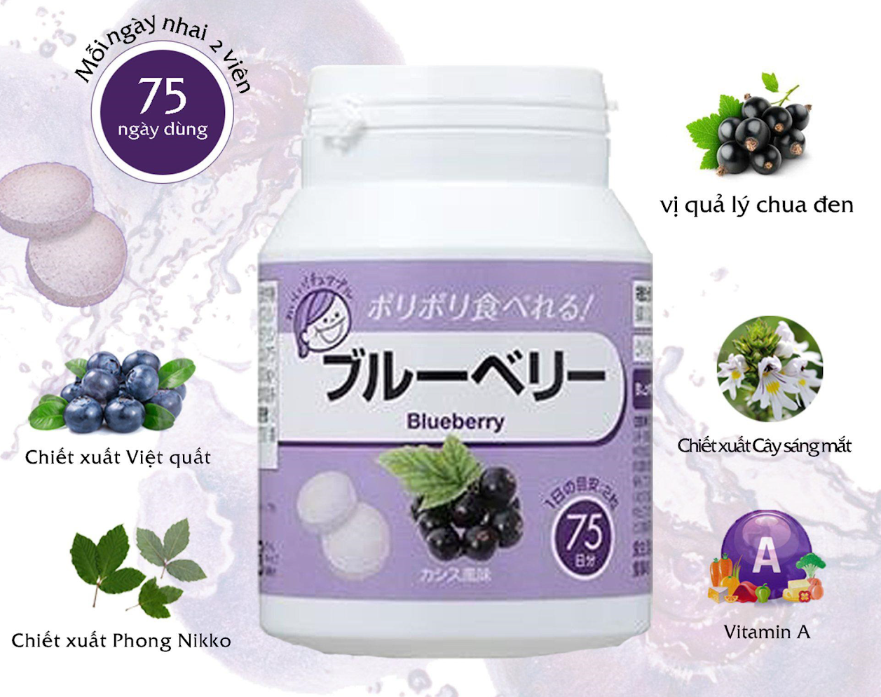 Bilberry Containing Processed Food Blueberry Chewable tablet