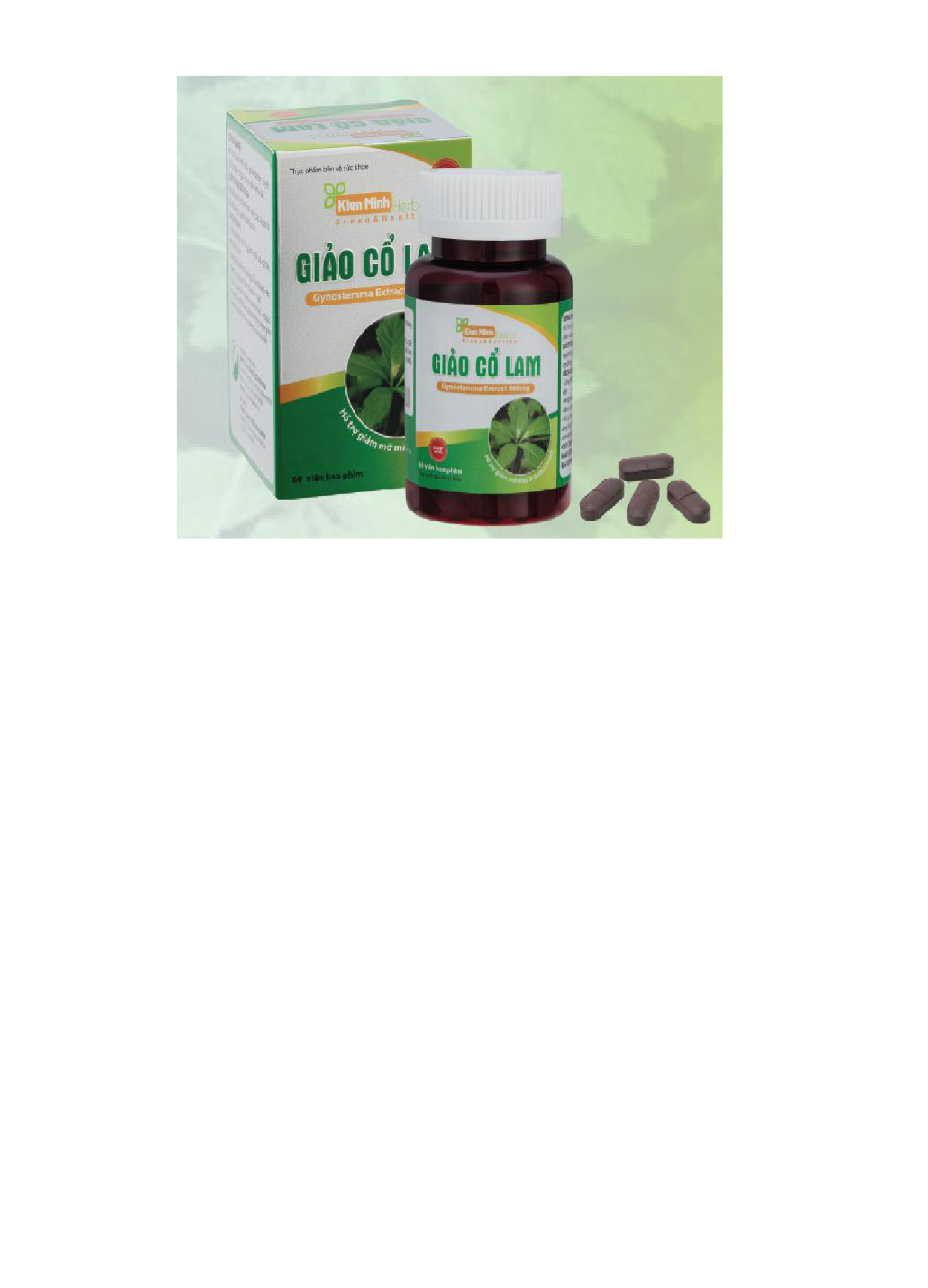 GIẢO CỔ LAM Gynostemma Extract 500mg