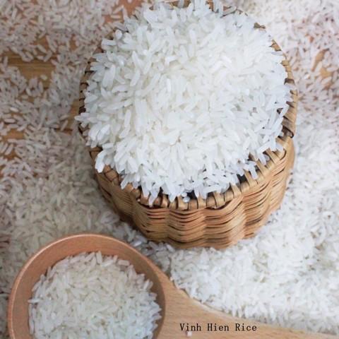 Đặc điểm nhận biết gạo OM 4900 (Nguồn: Gạo Vinh Hiển)