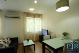 Studio for rent right in heart of Phu My Hung
