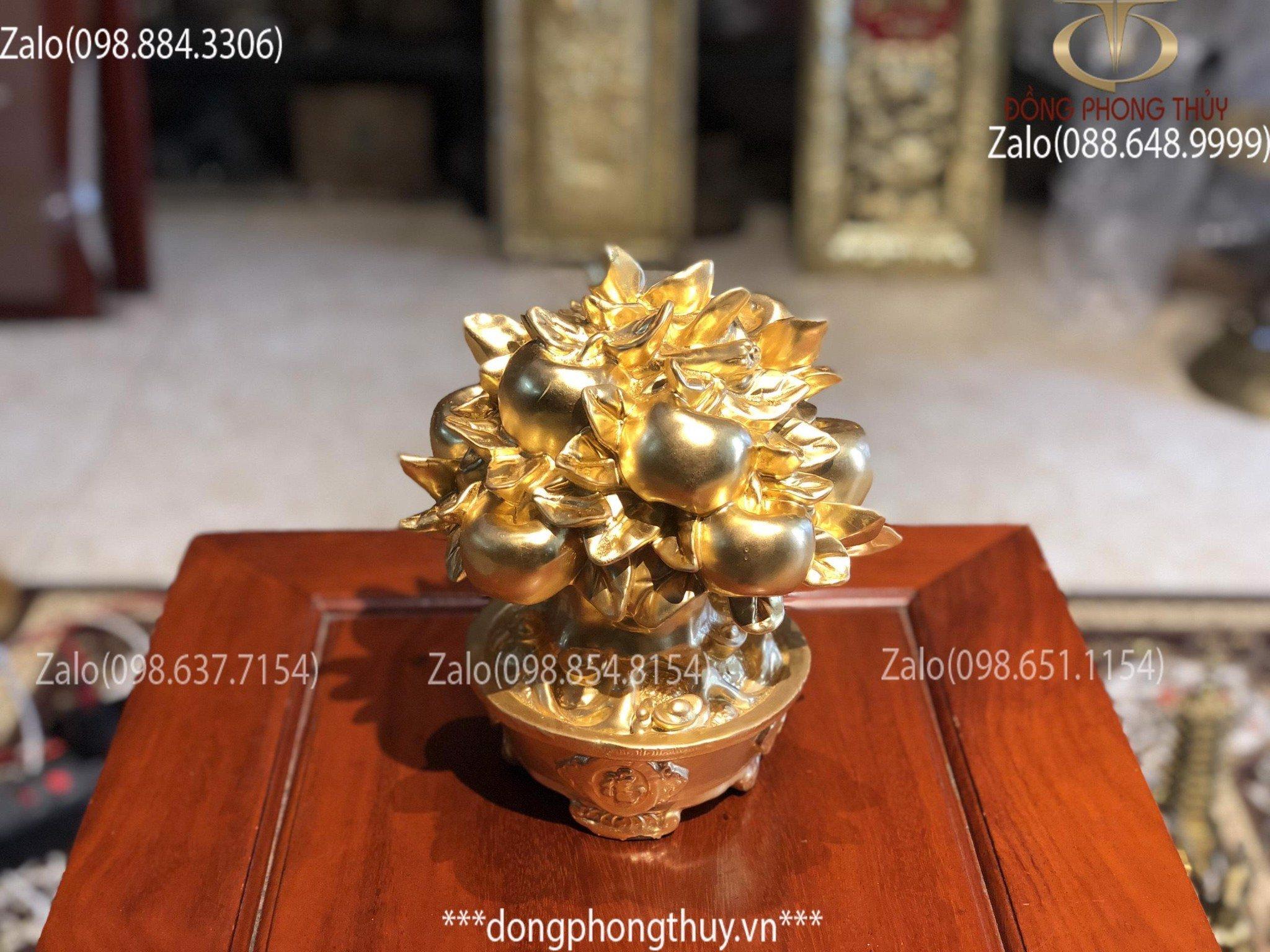 Cây tiền vàng tài lộc cây kim tiền bằng đồng dát vàng 24k