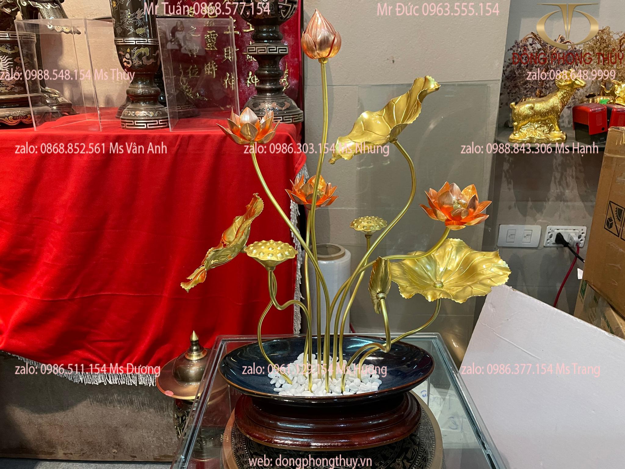 CHẬU Hoa sen bằng đồng ĐẠI BÁI đẹp