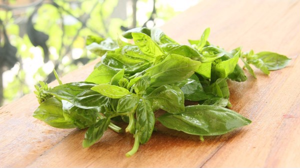 Dressing Fresh Basil (180ml)