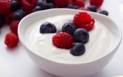 Yogurt No Sugar (5 cups, 300g/cup)