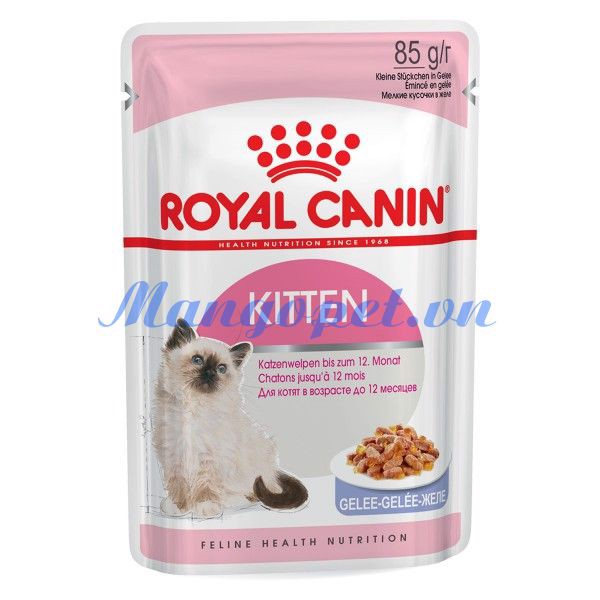 Royal Canin - Kitten (Jelly)