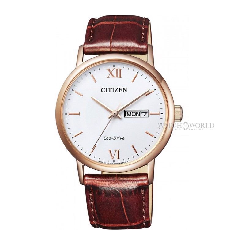 CITIZEN Eco-Drive 37mm - Ladies Watch