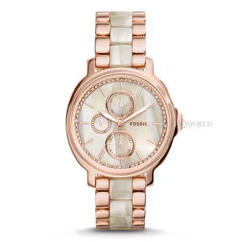 FOSSIL Chelsey 39mm - Ladies Watch