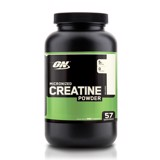 Optimum Nutrition Creatine Powder 300g