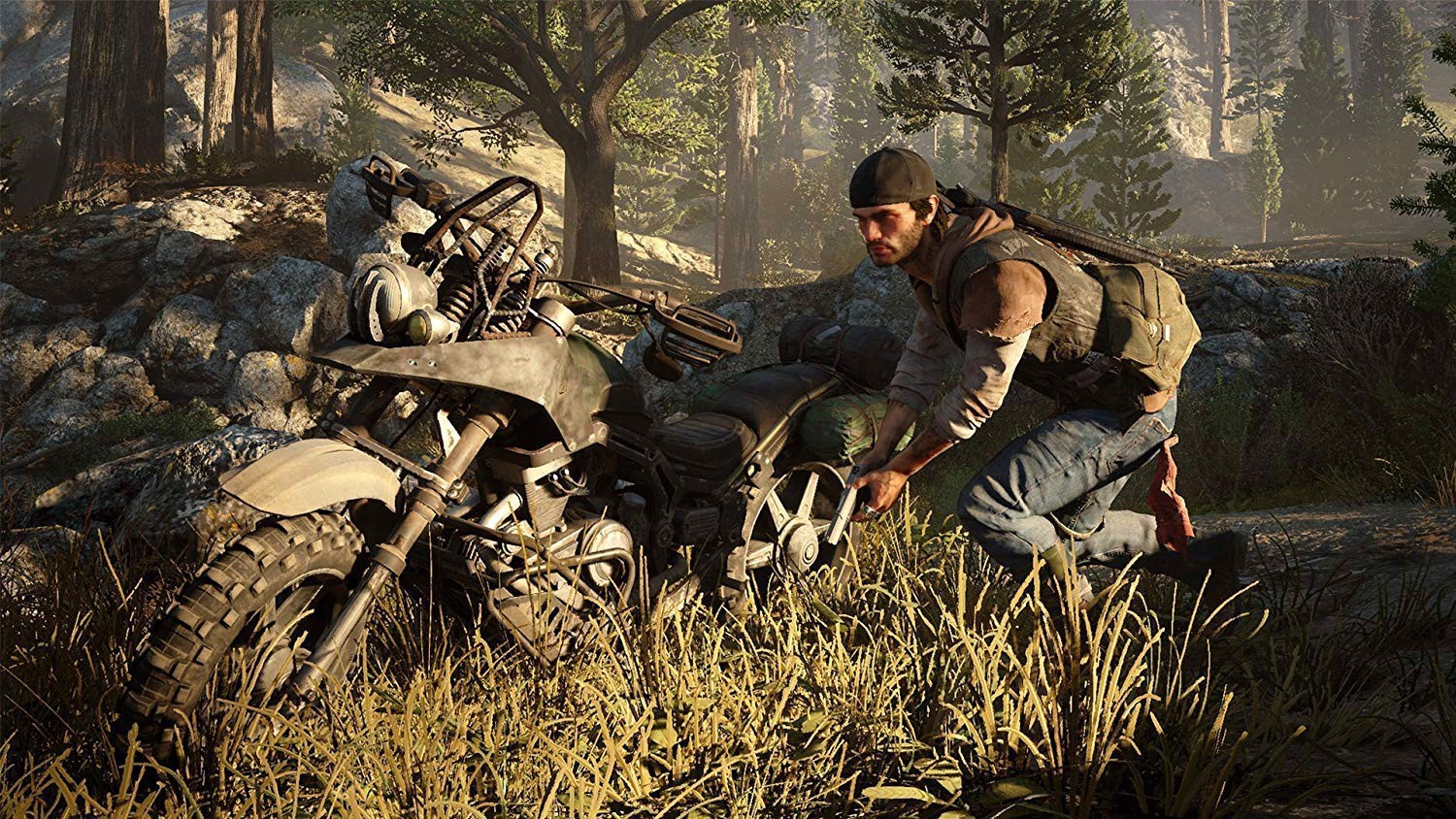 719 - Days Gone Collector's Edition
