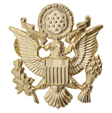 Pins Đại Bàng US Army- 22K Gold Vanguard-Size to