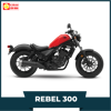 Honda Rebel 300cc