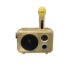 Loa Karaoke Bluetooth SD-501
