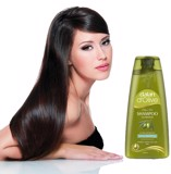 Dalan D'Olive Shampoo Nutrition Volumizing 400ml