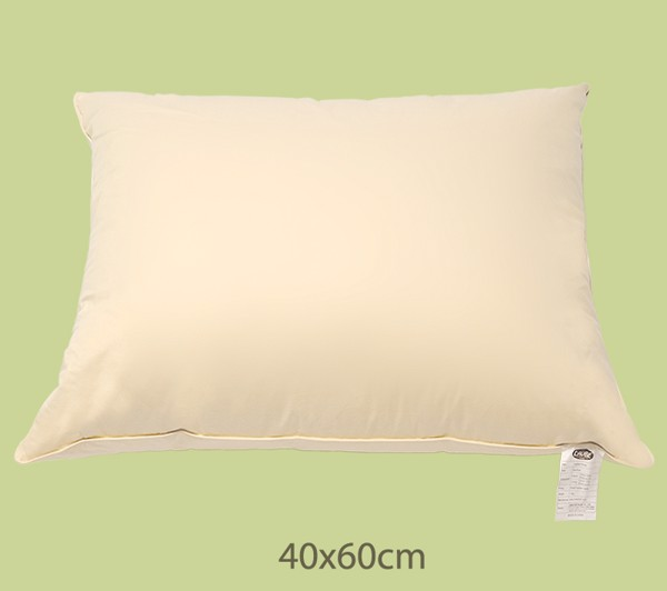 Gối Lông Ngỗng Feather LAUBE 40x60 Cm