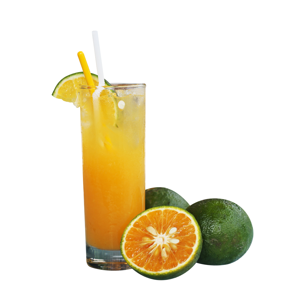 SPECIAL FRESH ORANGE JUICE