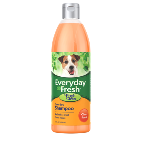 Everyday Fresh Scented Shampoo 474ml