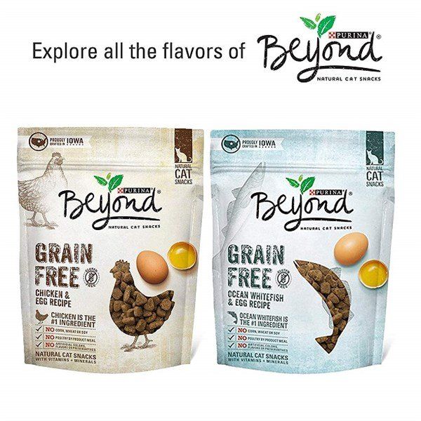 Purina Beyond Grain Free Recipes