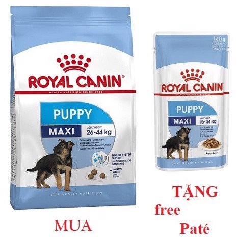 Combo Royal Canin Maxi Puppy 1kg + Maxi Puppy 140g